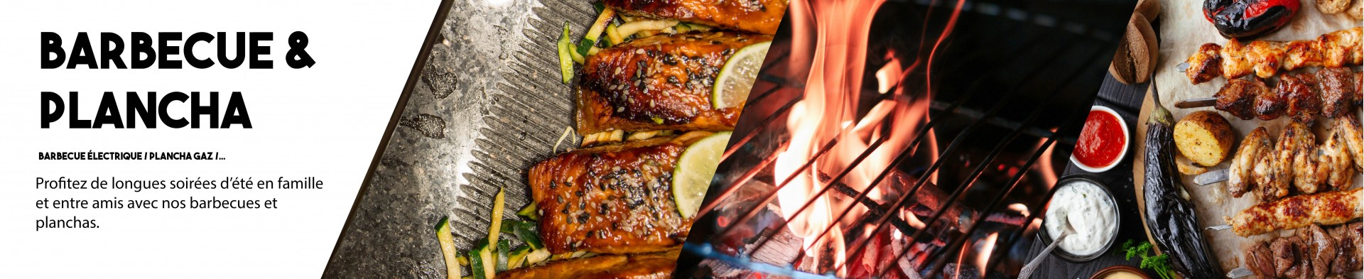 BARBECUE & PLANCHA - blackpanther.fr